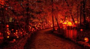 There's A Glowing Pumpkin Trail Coming To Minnesota And It'll Make Your Fall Magical