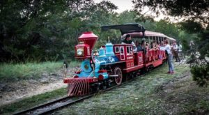 This Spooky Train Ride Will Show You A Side Of The Austin Zoo You've Never Seen before