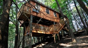 You'll Want To Visit This Unique Treehouse Village Hiding Right Here In West Virginia