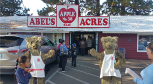 Nothing Says Fall Is Here More Than A Visit To Northern California's Charming Apple Farm