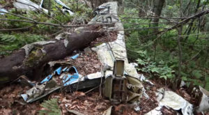 The Unique Hike In West Virginia That Leads You To Plane Wreckage From 1973