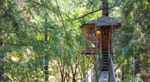 This Treehouse Resort In Oregon May Just Be Your New Favorite Destination