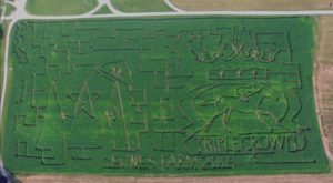 Get Lost In This Awesome 10-Acre Corn Maze In Kentucky This Autumn