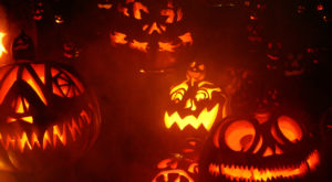 There's A Glowing Pumpkin Trail Coming To Massachusetts And It'll Make Your Fall Magical