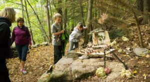 Attend This Enchanting Fairy House Festival In Vermont For The Most Magical Fall Day