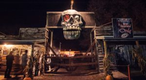 The New York Farm That Transforms Into A Halloween Wonderland Each Year