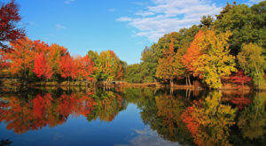 You'll Be Happy To Hear That Rhode Island's Fall Foliage Is Expected To Be Bright And Bold This Year