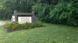 Stroll Through The Walnut Groves At This Majestic 260-Acre Park In Iowa