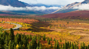 This Fall Colors Tour In Alaska Will Brighten Up The Season