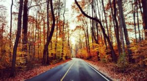 Fall Is Here And These Are The 9 Best Places To See The Changing Leaves In Virginia