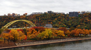 You'll Be Happy To Hear That Pittsburgh's Fall Foliage Is Expected To Be Bright And Bold This Year