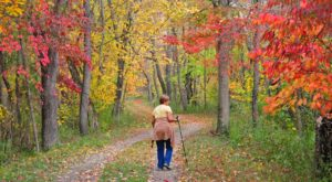 The Awesome Hike That Will Take You To The Most Spectacular Fall Foliage In Maryland