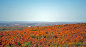 Here Are The 12 Best Places For A Bird's-Eye View Of Wisconsin's Fall Foliage
