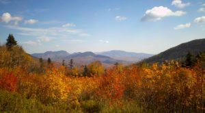 You'll Be Happy To Hear That New Hampshire's Fall Foliage Is Expected To Be Bright And Bold This Year