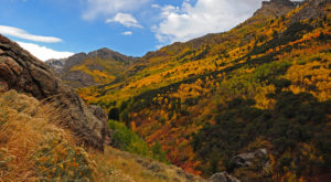 The Awesome Hike That Will Take You To The Most Spectacular Fall Foliage In Nevada