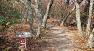 The Awesome Hike That Will Take You To The Most Spectacular Fall Foliage In Virginia