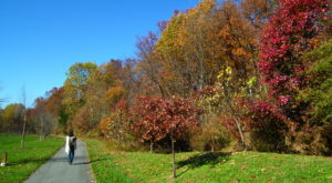 You'll Be Happy To Hear That Maryland's Fall Foliage Is Expected To Be Bright And Bold This Year