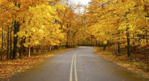 The 10 Best Scenic Drives For Viewing Wisconsin Fall Colors