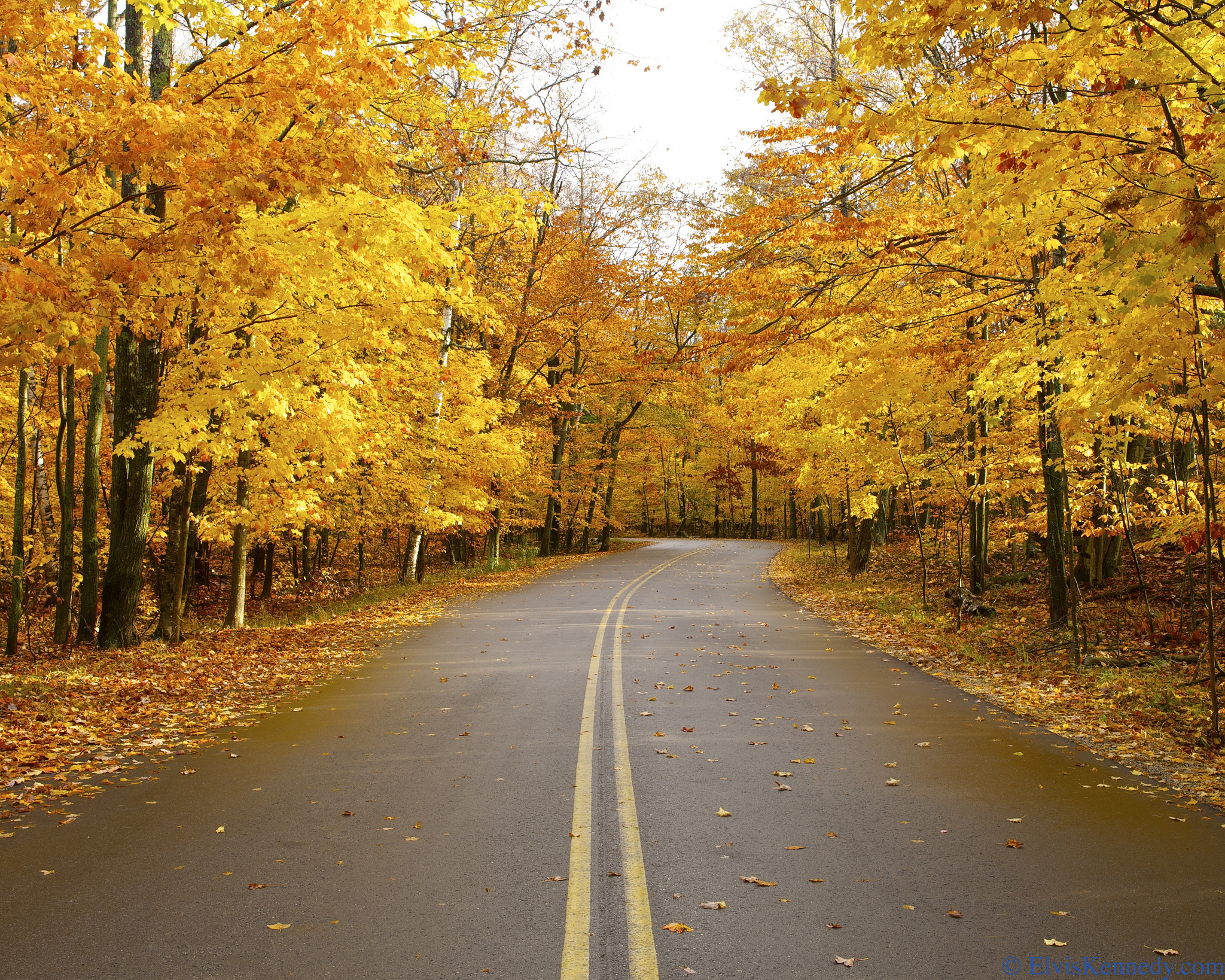 10 Wisconsin Drives For Maximum Fall Foliage Viewing