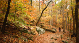 This Easy Fall Hike In Kentucky Is Under 2 Miles And You'll Love Every Step You Take