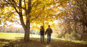Fall Is Coming And These Are The 10 Best Places To See The Changing Leaves In Massachusetts