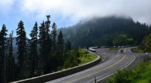 Take A Drive Down One Of Washington's Oldest Roads For A Picture Perfect Day