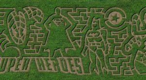 Get Lost In This Awesome 6-Acre Corn Maze In Delaware This Autumn