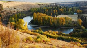 These 7 Enchanting Washington Drives Are Perfect For A Fall Day