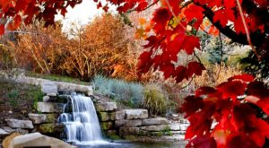 9 Kansas Parks And Arboretums Perfect For Getting Lost In Fall Foliage