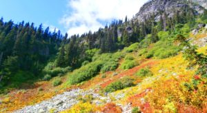 If You Can Only Hike 1 Washington Trail This Fall, You'll Want To Make It This One
