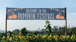 7 Little Known Fall Festivities In Cincinnati That Will Make Your Autumn Awesome