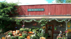 Nothing Says Fall Is Here More Than Massachusetts' Charming Maple Farm