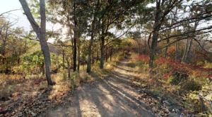 The Awesome Hike That Will Take You To The Most Spectacular Fall Foliage In Nebraska