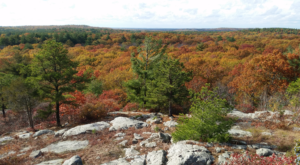 This Easy Fall Hike In Massachusetts Is Under 2 Miles And You'll Love Every Step You Take