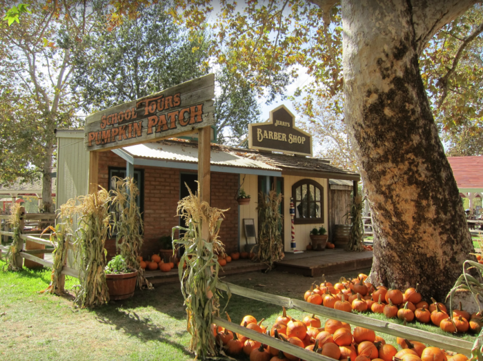 Apple orchard, pumpkin patch, corn maze, petting zoo: it's all.