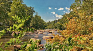 This Easy Fall Hike In Delaware Is Under 2 Miles And You'll Love Every Step You Take