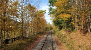 5 Ridiculously Charming Train Rides To Take In New York This Fall