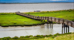The Country's First Wildlife Refuge Is In Northern California And It's Paradise