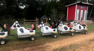 Visit This Barnyard In Alabama For A Picture-Perfect Fall Day
