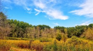 The Awesome Hike That Will Take You To The Most Spectacular Fall Foliage In Wisconsin