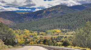 This Winding Scenic Road Is The Perfect Way To Experience Fall Foliage In New Mexico