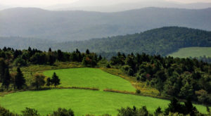 This Quaint Little Trail Is The Shortest And Sweetest Hike In New Hampshire