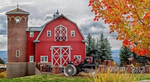 7 Welcoming Washington Farms To Visit For a Picture-Perfect Fall Day