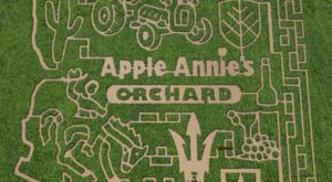 Get Lost In This Awesome 20-Acre Corn Maze In Arizona This Autumn