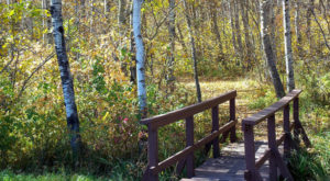 The Awesome Hike That Will Take You To The Most Spectacular Fall Foliage In North Dakota