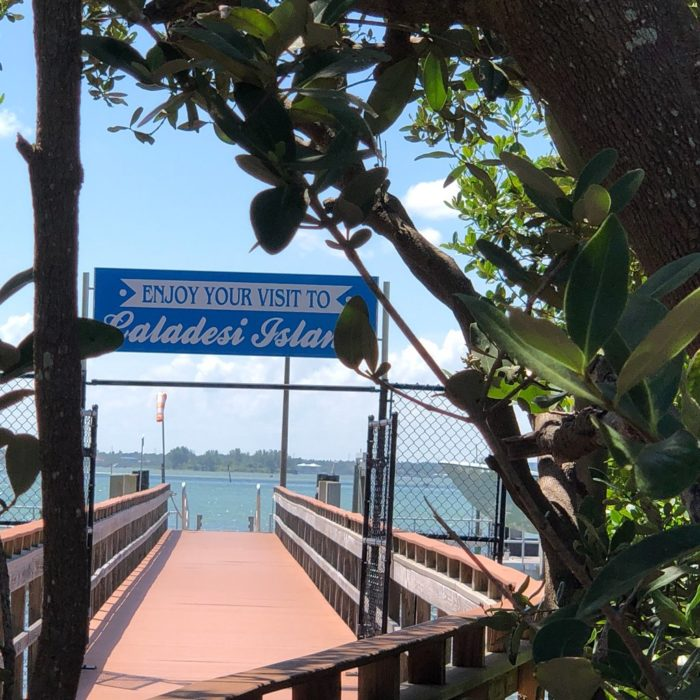 Caladesi Island Florida: Few People Know You Can Walk To Caladesi Island In Florida