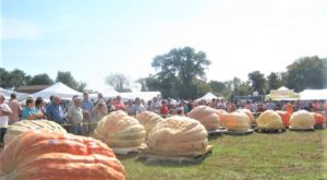 Rhode Island's Giant Pumpkin Festival Is Record Breaking And You Can't Miss It