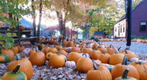 Nothing Says Fall Is Here More Than A Visit To Rhode Island's Charming Pumpkin Farm