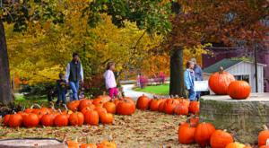 The Charming Pumpkin Festival Near Cleveland That Will Make Your Autumn Awesome