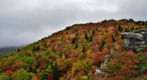 The Awesome Hike That Will Take You To The Most Spectacular Fall Foliage In North Carolina